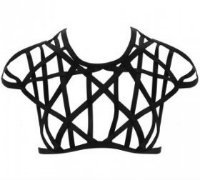 Lascivious Tyra Cropped Tee