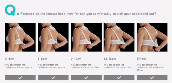 Figleaves bra size calculator